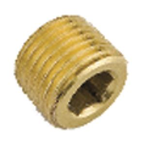 HOLLOW HEX HEAD PLUG